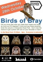 Birds-of-Bray-212x300