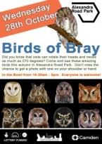 Birds-of-Bray-212x300